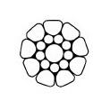 Dyform Evolution du monotoron, plus compact, meilleure résistance et allongement moindre à effort égal